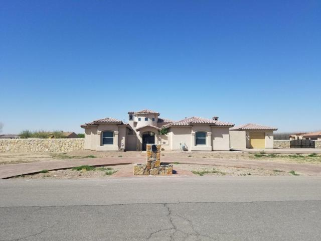 100 Calle Pequena, Anthony, NM 88021 (MLS #1805576) :: Steinborn & Associates Real Estate