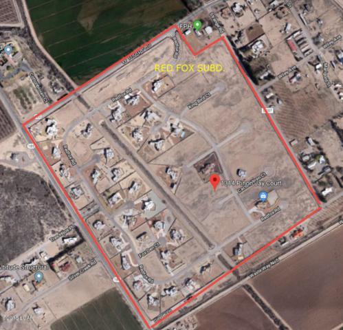 1314 Pinon Jay Court, Las Cruces, NM 88007 (MLS #1805666) :: Steinborn & Associates Real Estate