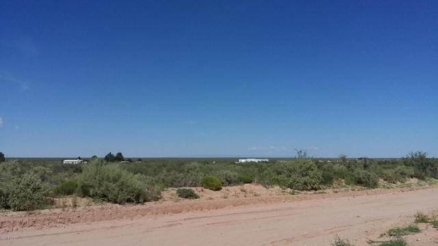 0 Quitman, Chaparral, NM 88081 (MLS #1805717) :: Steinborn & Associates Real Estate