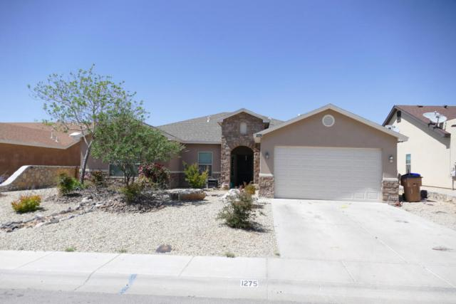 1275 Sapillo Dr Drive, Las Cruces, NM 88012 (MLS #1805788) :: Steinborn & Associates Real Estate