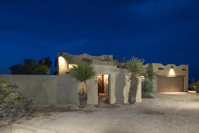 4061 Sotol Drive, Las Cruces, NM 88011 (MLS #1805863) :: Steinborn & Associates Real Estate
