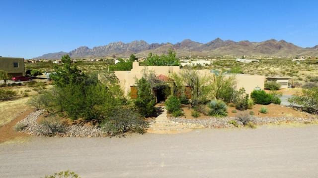 9902 Alberta Way, Las Cruces, NM 88011 (MLS #1805869) :: Steinborn & Associates Real Estate