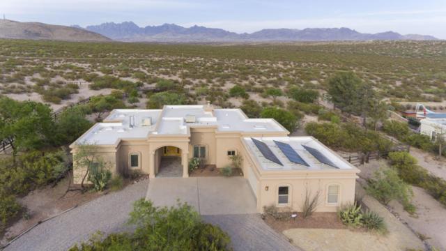 4955 Tobosa Road Road, Las Cruces, NM 88011 (MLS #1805945) :: Steinborn & Associates Real Estate
