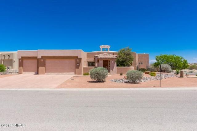 10024 Saragossa Court, Las Cruces, NM 88007 (MLS #1806008) :: Steinborn & Associates Real Estate