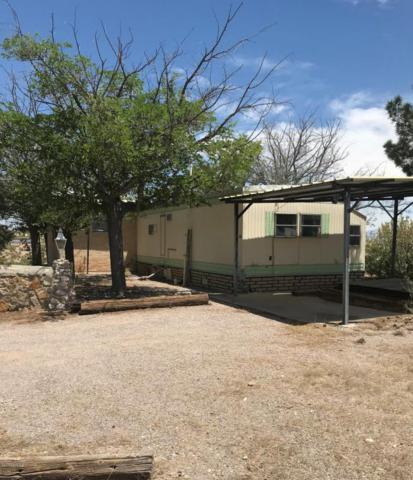 750 Lonesome Road, Las Cruces, NM 88007 (MLS #1806016) :: Steinborn & Associates Real Estate