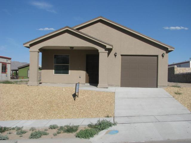 303 Rio Grande Drive, Sunland Park, NM 88063 (MLS #1806021) :: Steinborn & Associates Real Estate