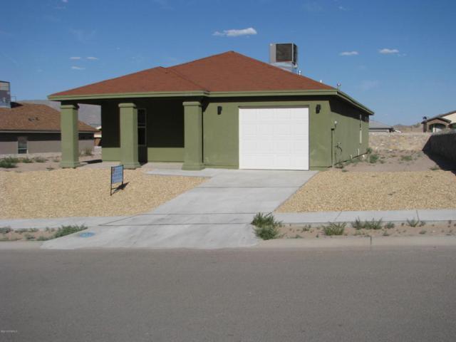 305 Rio Grande Drive, Sunland Park, NM 88063 (MLS #1806023) :: Steinborn & Associates Real Estate