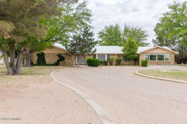 520 Grindell Road, Las Cruces, NM 88001 (MLS #1806032) :: Steinborn & Associates Real Estate