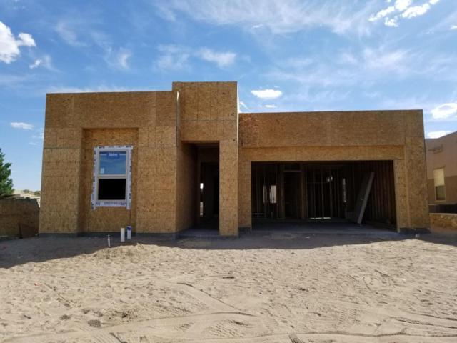 1901 Calle De Fuerte, Las Cruces, NM 88011 (MLS #1806040) :: Steinborn & Associates Real Estate
