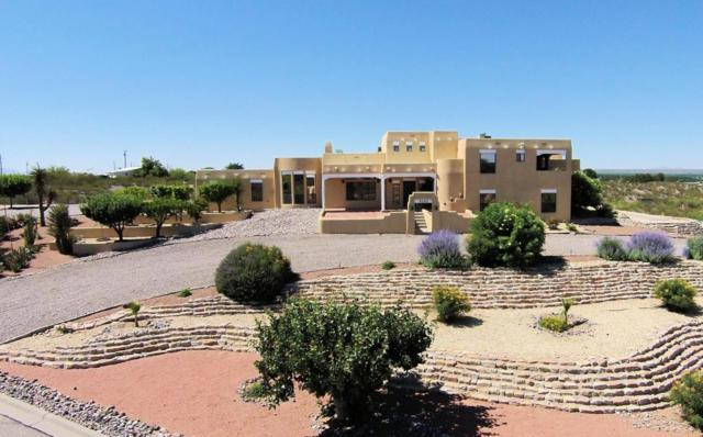 5252 Eagle Pass Road, Las Cruces, NM 88011 (MLS #1806053) :: Steinborn & Associates Real Estate