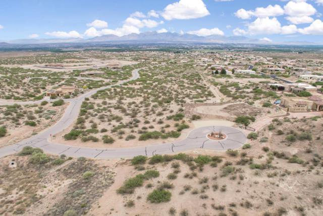 0000 Nicho Place, Las Cruces, NM 88007 (MLS #1806062) :: Steinborn & Associates Real Estate