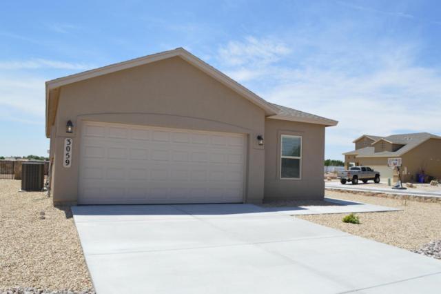 3059 San Lorenzo Avenue, Las Cruces, NM 88007 (MLS #1806064) :: Steinborn & Associates Real Estate