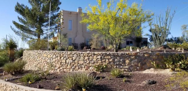 4625 Real Del Sur, Las Cruces, NM 88011 (MLS #1806070) :: Steinborn & Associates Real Estate