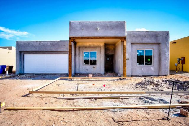 3712 Santa Minerva Avenue, Las Cruces, NM 88012 (MLS #1806072) :: Steinborn & Associates Real Estate