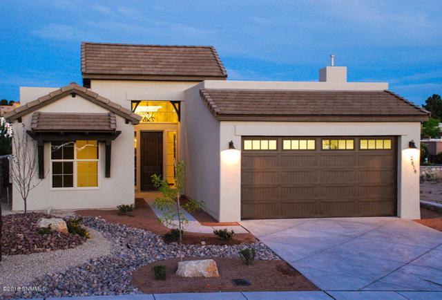 2816 Maddox Loop, Las Cruces, NM 88011 (MLS #1806096) :: Steinborn & Associates Real Estate