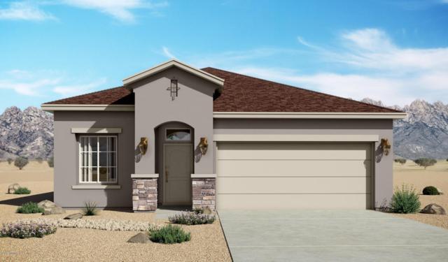 7004 Metro Park Street, Las Cruces, NM 88012 (MLS #1806099) :: Steinborn & Associates Real Estate