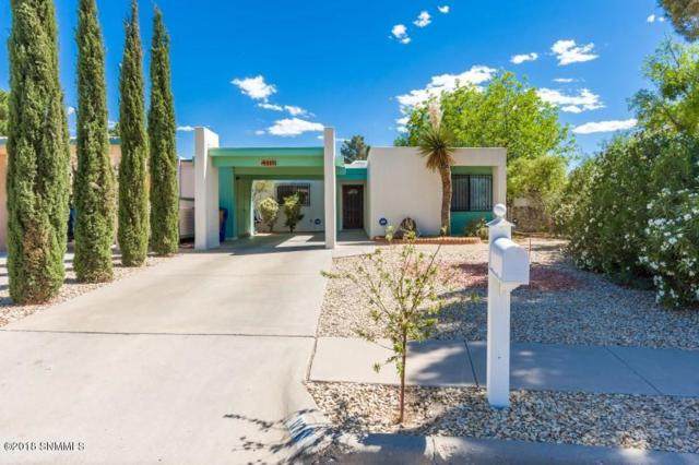 1171 Birch Drive, Las Cruces, NM 88001 (MLS #1806102) :: Steinborn & Associates Real Estate