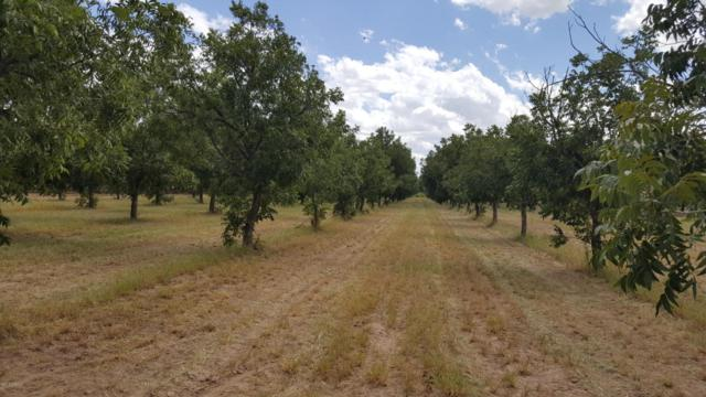 411 Hayride Road, Las Cruces, NM 88005 (MLS #1806114) :: Steinborn & Associates Real Estate