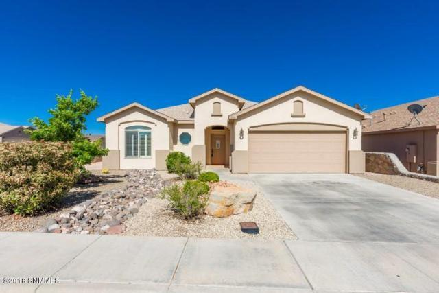 7474 Sierra Luz Drive Drive, Las Cruces, NM 88012 (MLS #1806116) :: Steinborn & Associates Real Estate