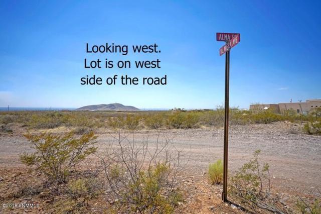 Tract 4B Alma Road, Las Cruces, NM 88011 (MLS #1806162) :: Steinborn & Associates Real Estate