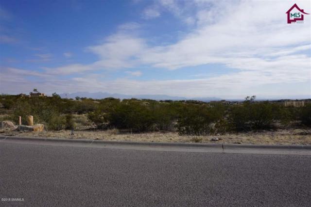 TBD Puerta Vieja Place, Las Cruces, NM 88007 (MLS #1806164) :: Steinborn & Associates Real Estate