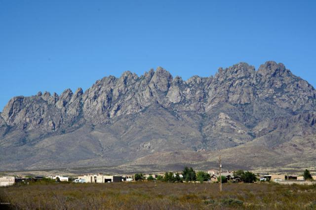 0000 Wind Dancer, Las Cruces, NM 88011 (MLS #1806208) :: Steinborn & Associates Real Estate