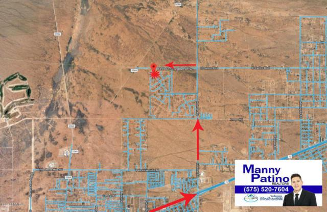 8399 Grouse Run Drive, Las Cruces, NM 88012 (MLS #1806261) :: Steinborn & Associates Real Estate