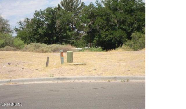 151 Scotland Court, Las Cruces, NM 88005 (MLS #1806266) :: Steinborn & Associates Real Estate