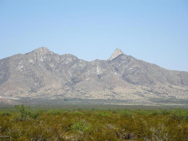 7680 Rabbit Run Road Lot 1, Las Cruces, NM 88012 (MLS #1806295) :: Austin Tharp Team