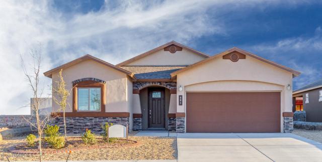 890 Holly Park, Santa Teresa, NM 88008 (MLS #1806308) :: Steinborn & Associates Real Estate