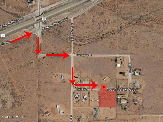 10301 Baraka Court, Las Cruces, NM 88011 (MLS #1806351) :: Steinborn & Associates Real Estate