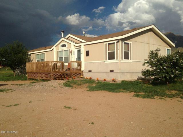 10000 Starfly Road, Las Cruces, NM 88011 (MLS #1806353) :: Steinborn & Associates Real Estate