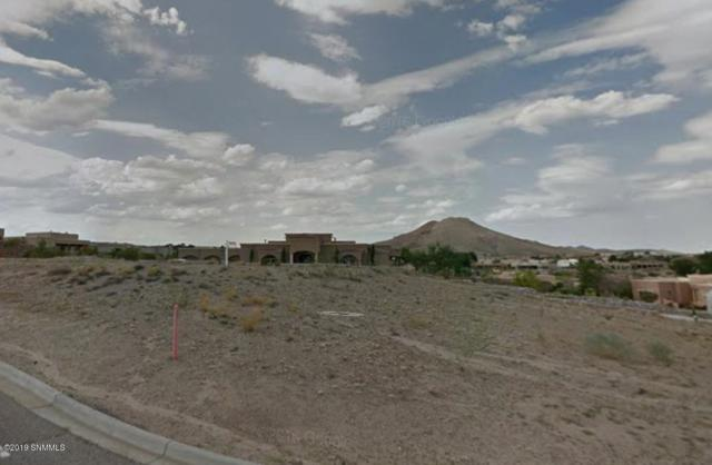 10005 San Marcos Court, Las Cruces, NM 88007 (MLS #1806452) :: Steinborn & Associates Real Estate