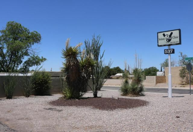 537 N Solano Drive, Las Cruces, NM 88001 (MLS #1806508) :: Steinborn & Associates Real Estate