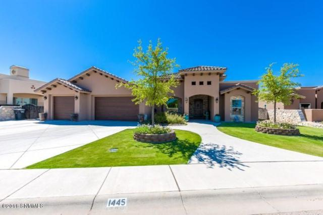 1445 San Bonifacio Arc, Las Cruces, NM 88005 (MLS #1806544) :: Steinborn & Associates Real Estate