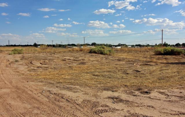 128 Coues Deer Avenue, Las Cruces, NM 88007 (MLS #1806554) :: Steinborn & Associates Real Estate