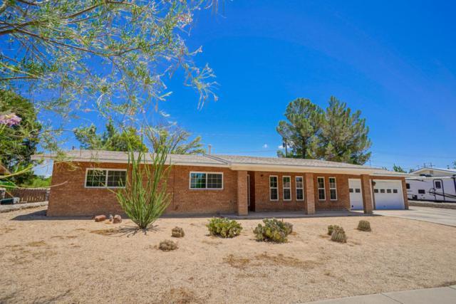 2806 Devendale Avenue, Las Cruces, NM 88005 (MLS #1806566) :: Steinborn & Associates Real Estate