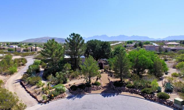 4430 Winchester Road, Las Cruces, NM 88011 (MLS #1806577) :: Steinborn & Associates Real Estate