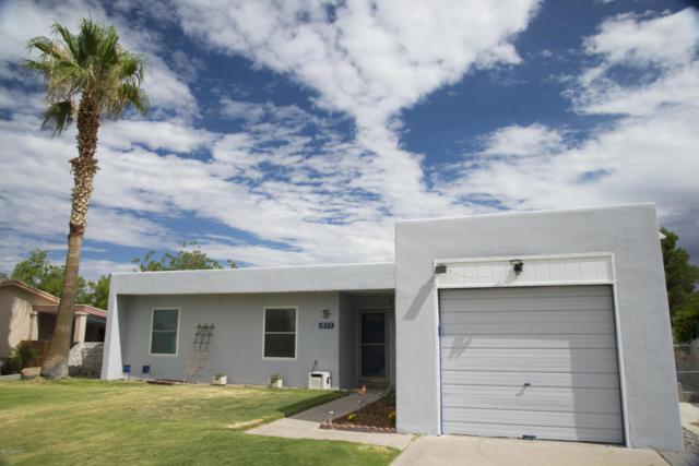 1875 Stanton Avenue, Las Cruces, NM 88001 (MLS #1806601) :: Steinborn & Associates Real Estate