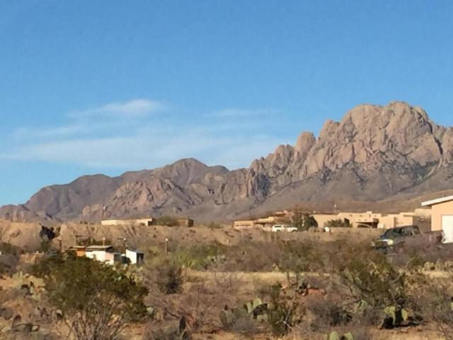000 Silver King, Las Cruces, NM 88011 (MLS #1806696) :: Steinborn & Associates Real Estate