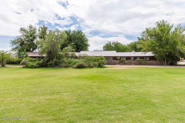 8105 Dona Ana Road, Las Cruces, NM 88007 (MLS #1806723) :: Steinborn & Associates Real Estate