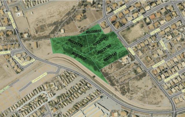 00 Spitz Street, Las Cruces, NM 88005 (MLS #1806731) :: Steinborn & Associates Real Estate