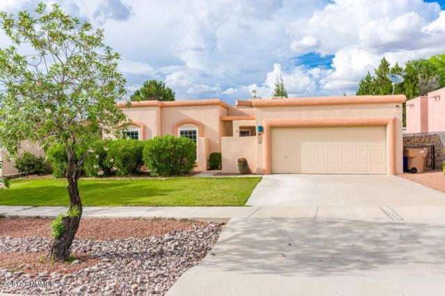 4433 Los Arboles Drive, Las Cruces, NM 88011 (MLS #1806765) :: Steinborn & Associates Real Estate