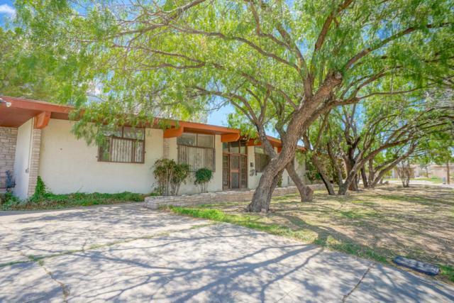 1300 Park Drive, Las Cruces, NM 88005 (MLS #1806798) :: Steinborn & Associates Real Estate