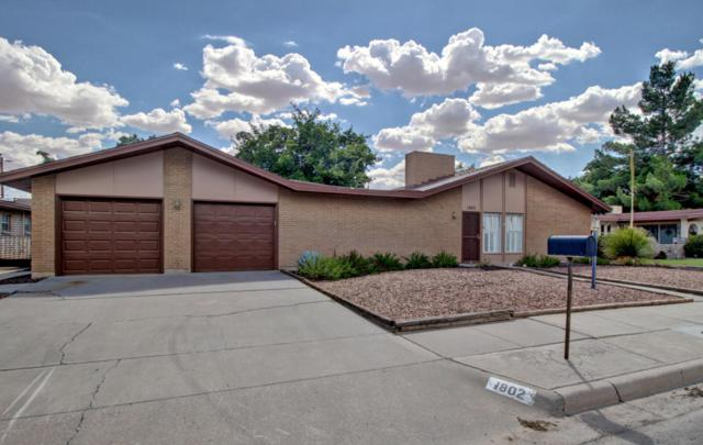 1802 Apollo Drive, Las Cruces, NM 88005 (MLS #1806825) :: Steinborn & Associates Real Estate