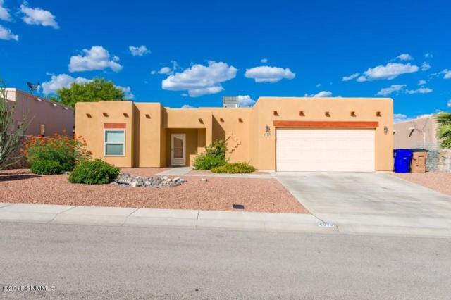 4070 Gila Trail Trail, Las Cruces, NM 88005 (MLS #1806827) :: Steinborn & Associates Real Estate
