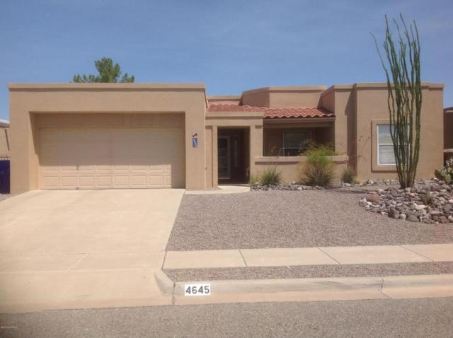 4645 Nogal Canyon Road, Las Cruces, NM 88011 (MLS #1806862) :: Steinborn & Associates Real Estate
