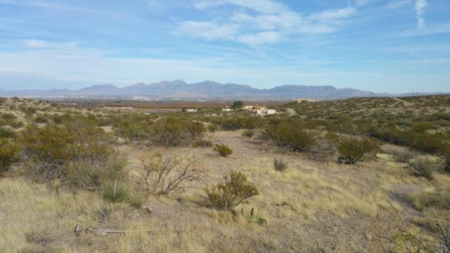 TBD Desert Star Road, Las Cruces, NM 88005 (MLS #1806924) :: Steinborn & Associates Real Estate
