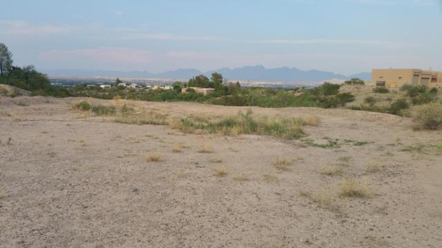 TBD Larkspur Way, Las Cruces, NM 88005 (MLS #1806994) :: Steinborn & Associates Real Estate