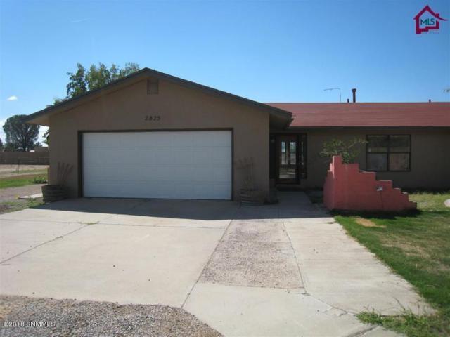 2825 Sandstone Lane, Las Cruces, NM 88007 (MLS #1807005) :: Steinborn & Associates Real Estate